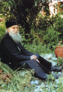 Elder Thaddeus of Vitovnica